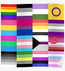 LGBT Pride Flags Collage Poster