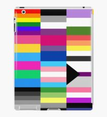 LGBT Pride Flags Collage iPad Case/Skin