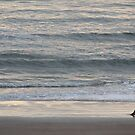 Quiet Moment Alone by eoconnor