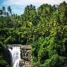 Bali Falls by Nathan Jermyn