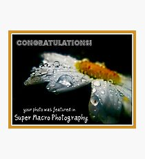 Super Macro Photography:Featured Banner  Photographic Print