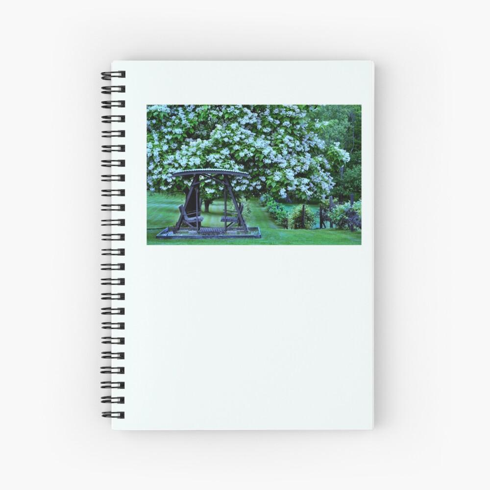 Catalpa-Baum in voller Blüte Spiralblock
