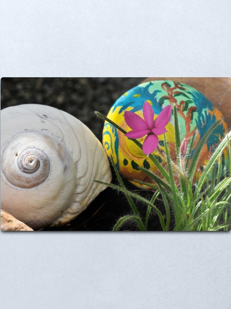 Alternate view of Moon Shells Metal Print