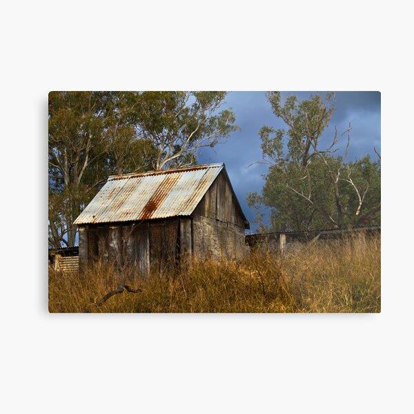 bush shed Metal Print