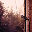 Mikrofon von Taylorly