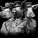 Kriegsschweine von joshbillings