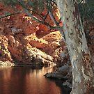 Ellery Creek Big Hole by philip73
