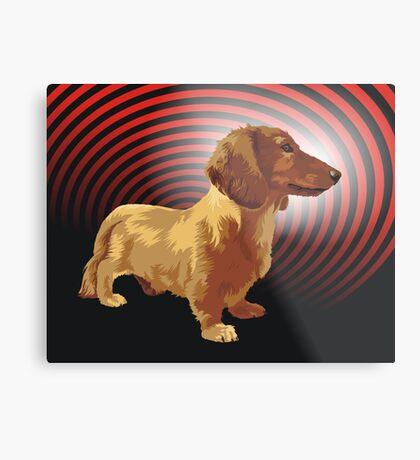 George dachshund Metal Print
