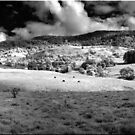 Panorama in Infared by Kym Howard