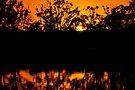 Sunset Glow by Helen Vercoe