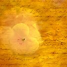 Romantic Vintage Love Letter Flower Art Photography by Phototrinity