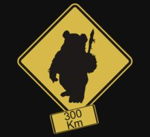 Ewoks Crossing