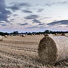 Field of bales by Paul Hickson