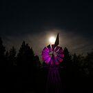 In the Twilight Zone  by Borror