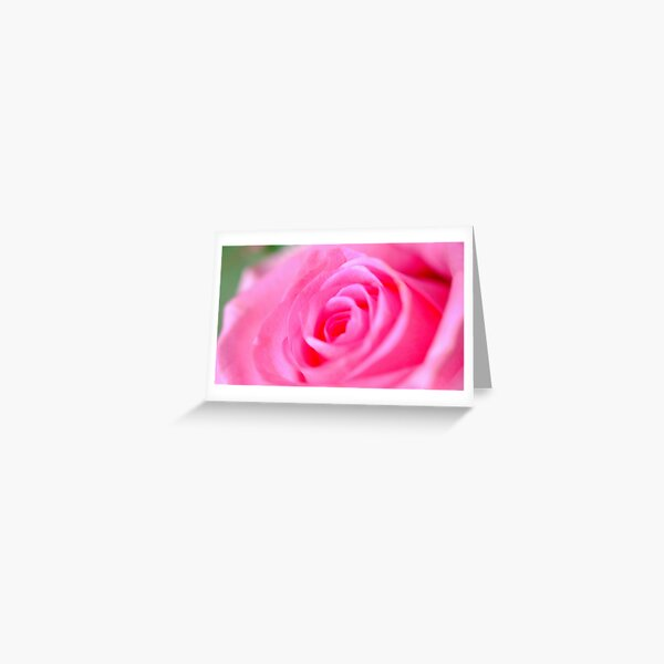 Pink bloom Greeting Card