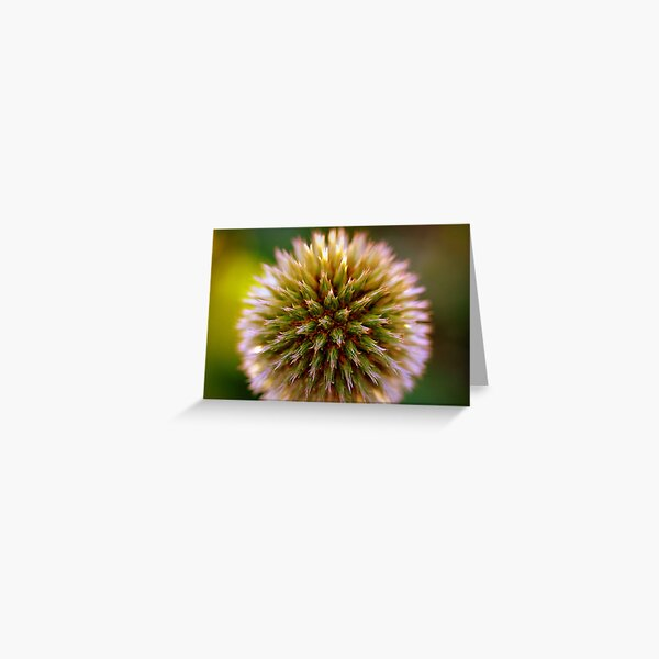 Burst of life Greeting Card