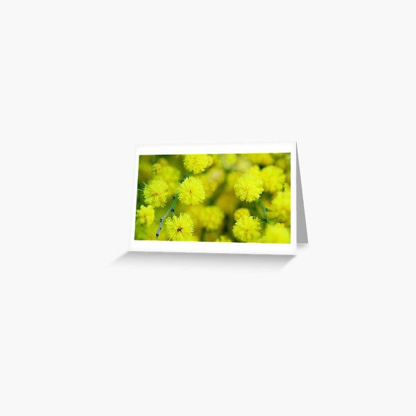 Yellow candy burst Greeting Card