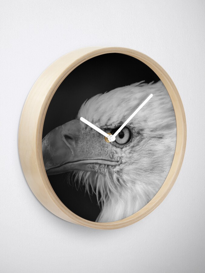 Alternate view of Eagle Clock