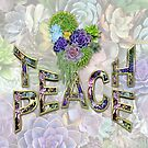 South Africa Succulents & Teach Peace by NadineMay