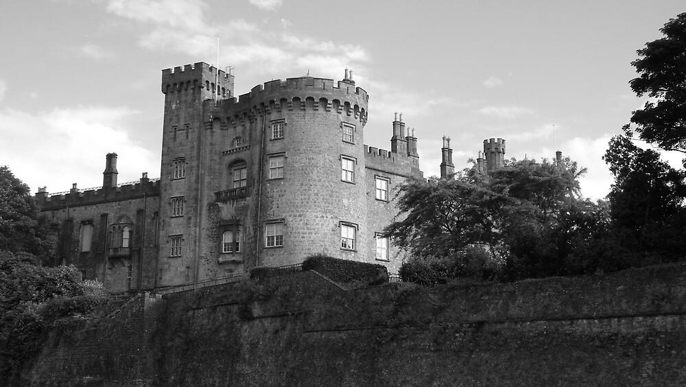 Kilkenny Castle by Brendan Brennan