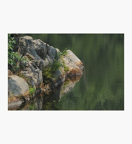 Simple Beauty Photographic Print