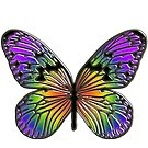 Rainbow butterfly by bmgdesigns