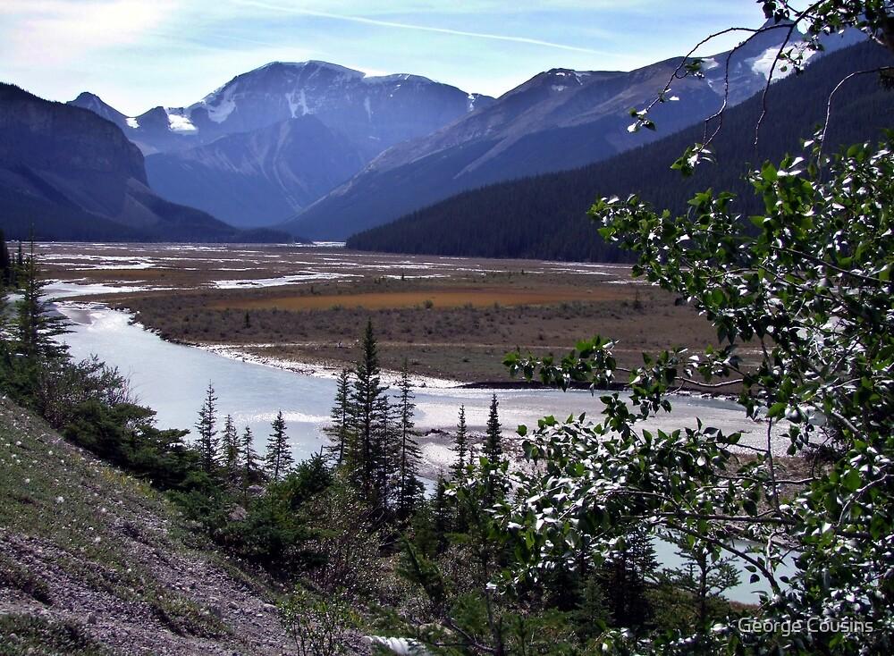 Beauty Creek Flatlands by George Cousins