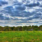 Nebraska Sky Two by Tim Wright