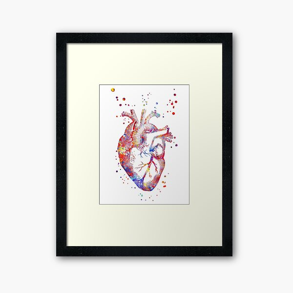 Human heart, heart anatomy, medical art, watercolor heart, heart print, abstract heart Framed Art Print