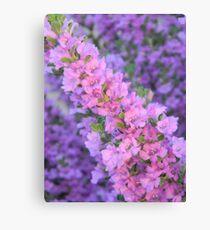 Purple Desert Sage Canvas Print