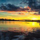 The Wildlife Sunset by vasasphoto