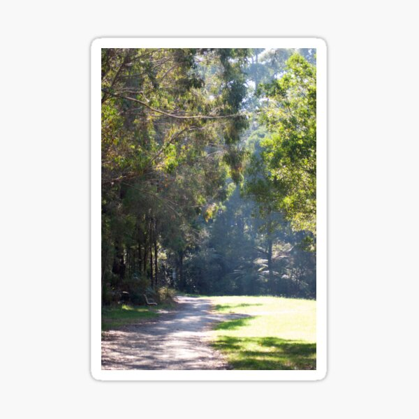 Misty morning walk Sticker
