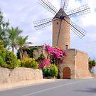 Majorca Mill by Rosy Kueng Photography