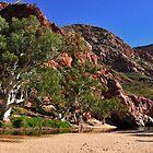 Ormiston Gorge  by mspfoto