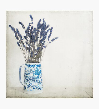 Lavender in Blue and White Jug Photographic Print