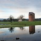 Yarra Valley reflections by gary A. trounson