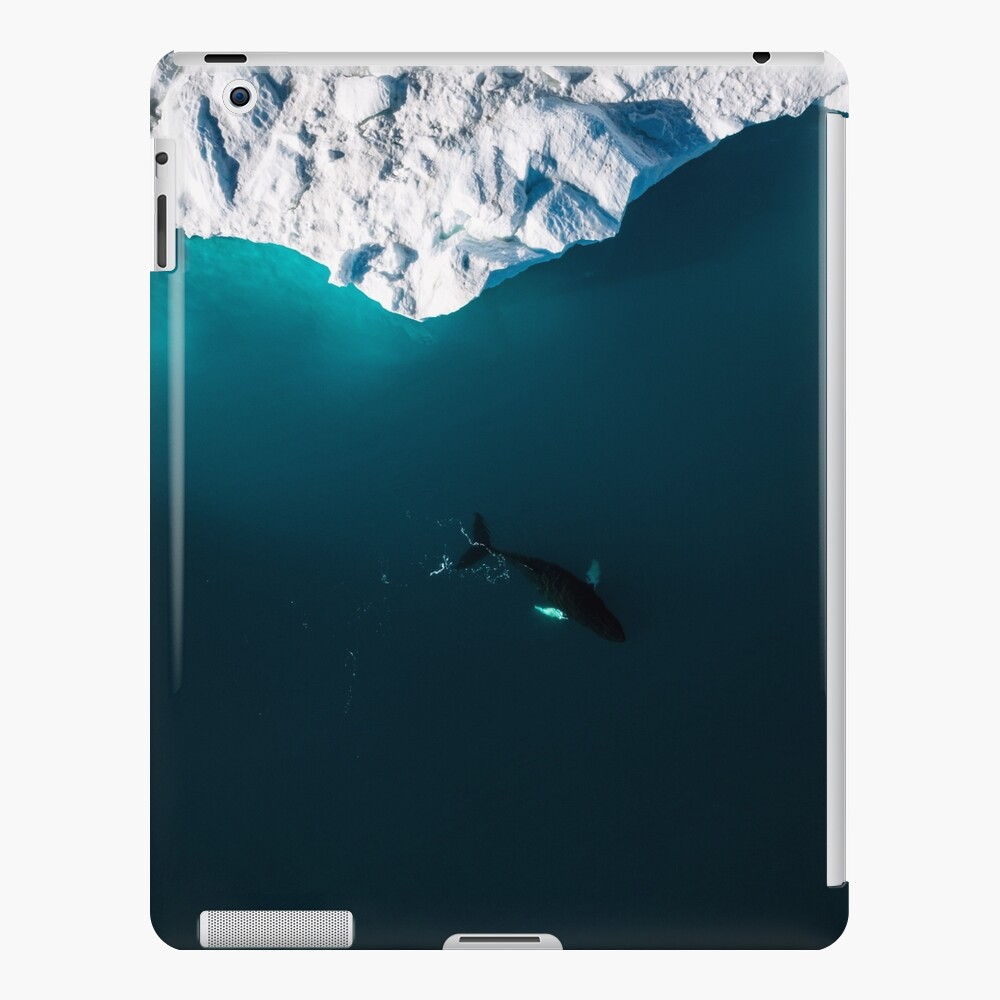 Aerial of a lone Humpback whale in front of an iceberg in Greenland iPad Case & Skin