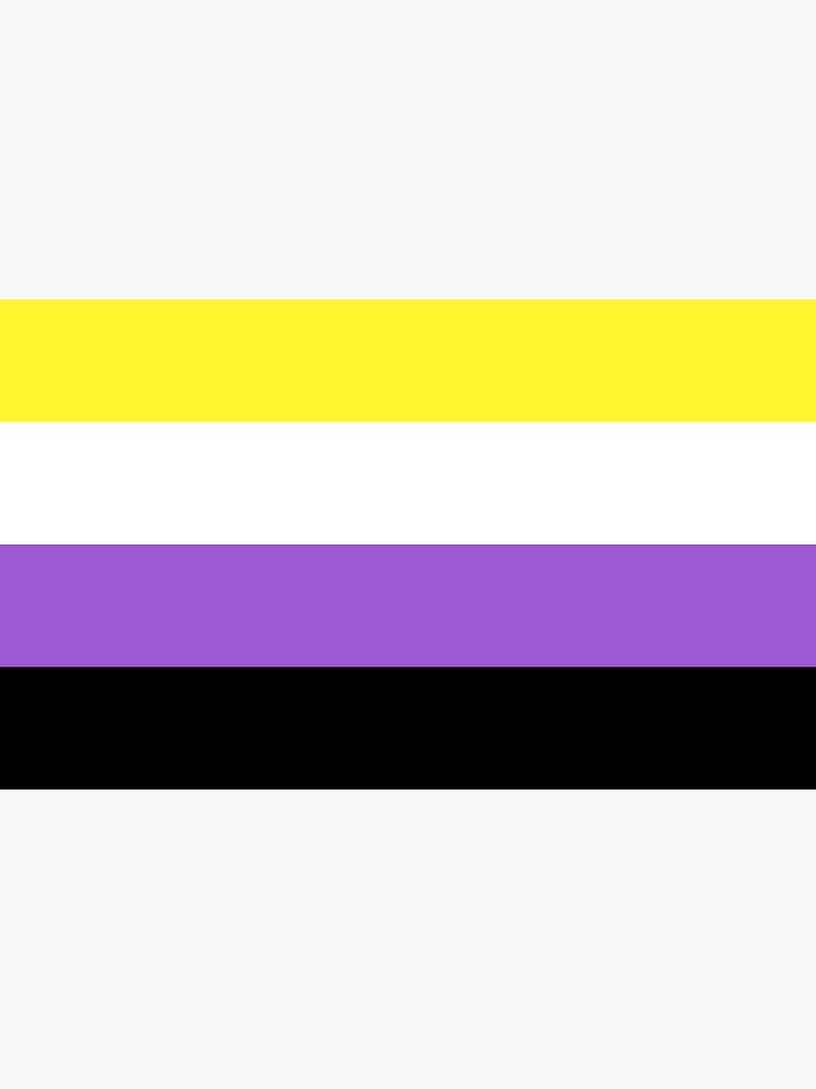 Bandera no binaria de baiiley