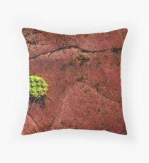 Cactus On Quartzite Throw Pillow