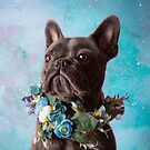 The Frenchie Collection | Frankie by Peggy Colclough