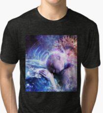 A Prayer For The Earth Tri-blend T-Shirt