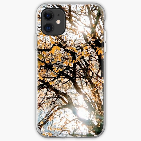 Autumn Blaze upon the Lake iPhone Soft Case