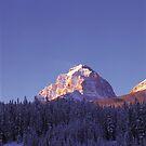 Mt. Temple Glow by Graeme Wallace