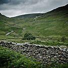 Kirkstone Pass Inn, Cumbria by Mark Howells-Mead