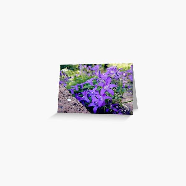 bellflower Greeting Card