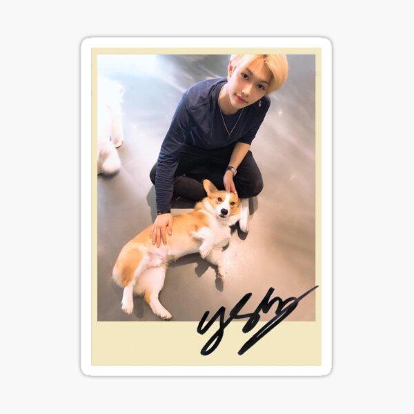 felix + dog polaroid yellow Sticker