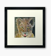 Yellow Eyed Cat Framed Print