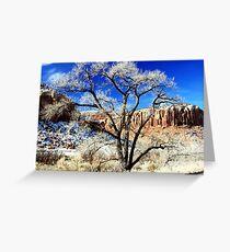 Roadside Tree - Capitol Reef Nat'l Park Greeting Card