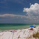 Beach on Gasparilla Island by Joe Elliott