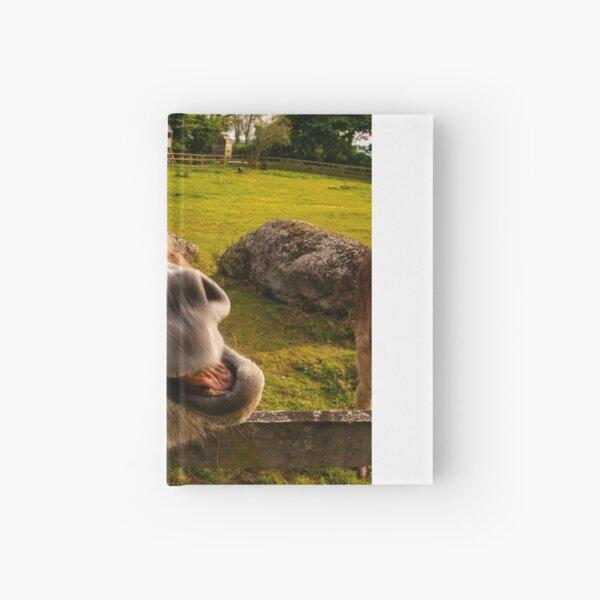 laughing donkey Hardcover Journal